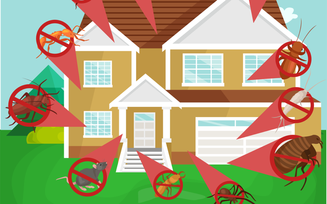 How to Prevent Pests Around the House, Both Inside and Outside