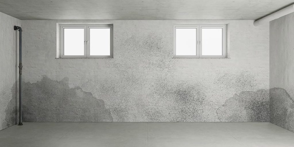 Moisture control, particularly in basements, can curb pests who like dark, cold and humid environments. A concrete walled basement with wet spots in the corners.
